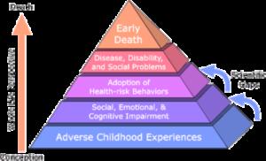 Pyramid graph of trauma-informed care