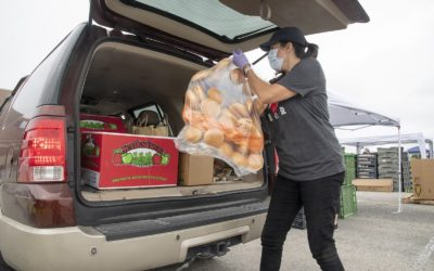 Hogg Foundation COVID-19 Response Highlighted by Food Bank Emergency Funding