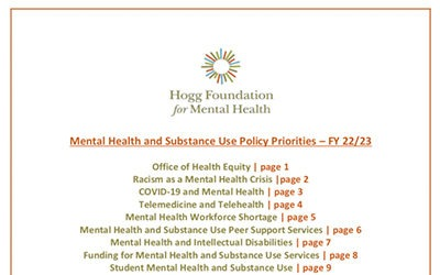 Hogg Foundation Policy Priorities for 2022 and Beyond