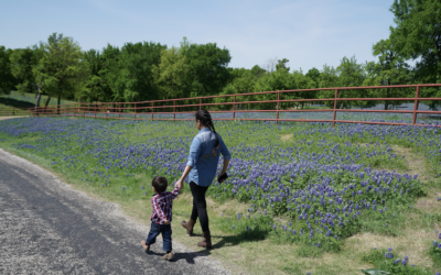 Hogg Foundation Awards $3.75 Million in Grants to Address Well-being in Rural Communities